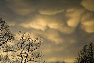 Hail storm 6