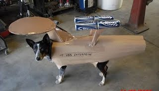 Star trek dog