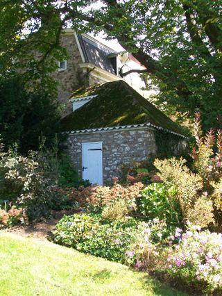 Burpee Garden and misc - Sept 104