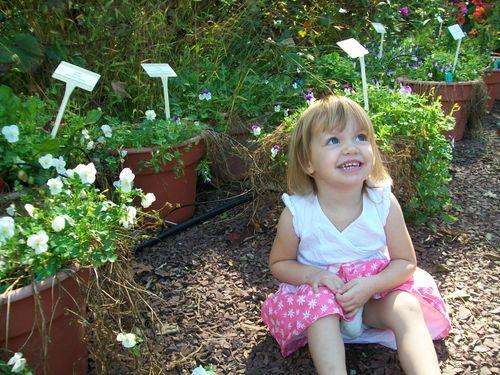 Burpee Garden and misc - Sept 071