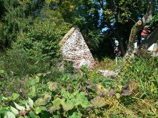 Burpee Garden and misc - Sept 092