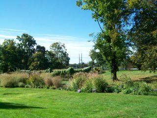 Burpee Garden and misc - Sept 044
