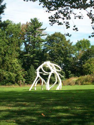 Burpee Garden and misc - Sept 105