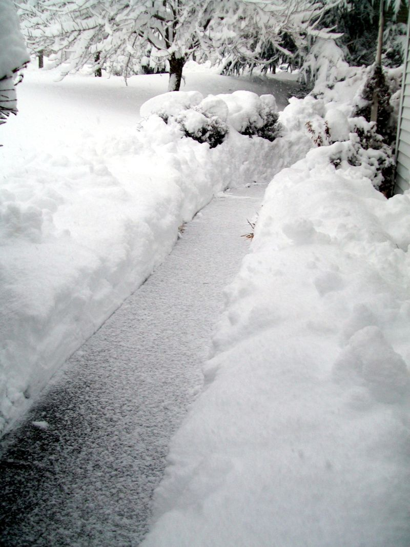 Feb 10 blizzard 012