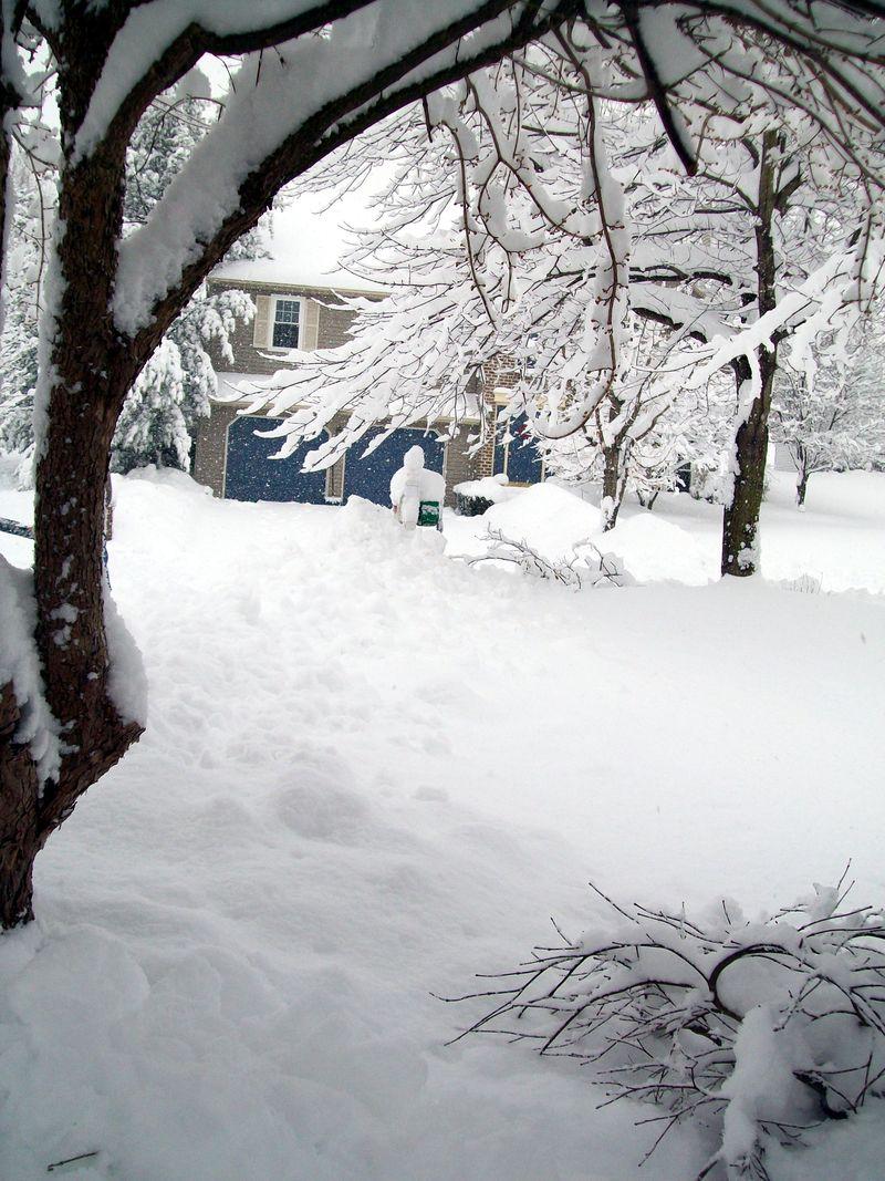 Feb 10 blizzard 015