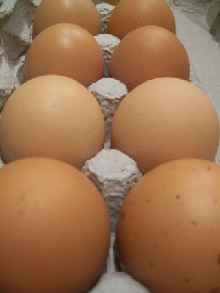 Co-op eggs 002