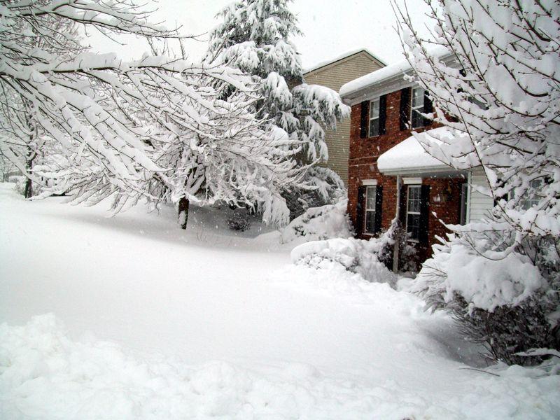 Feb 10 blizzard 010