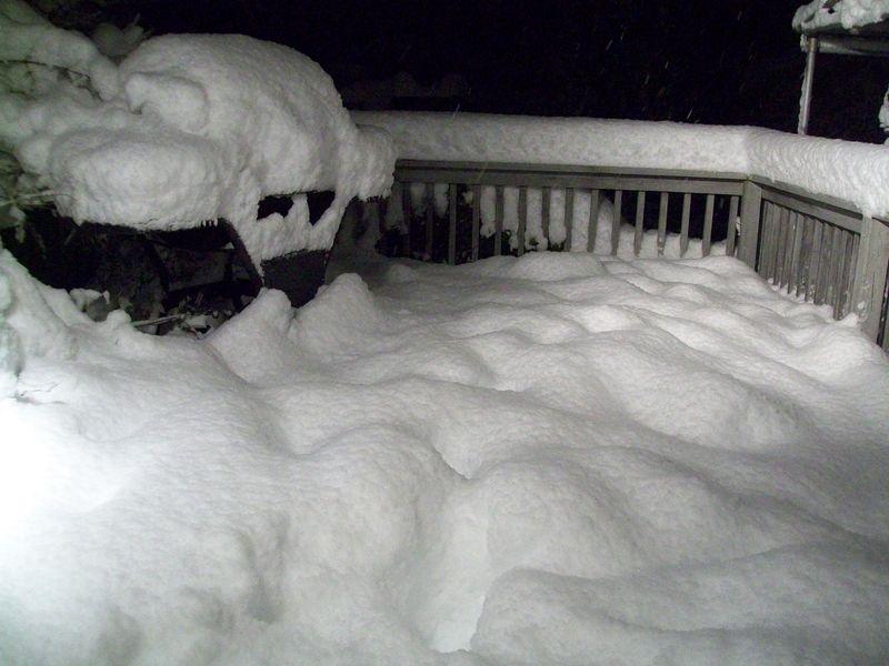 Feb 10 blizzard 027