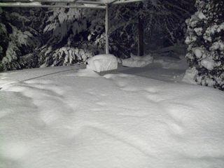 Feb 10 blizzard 026