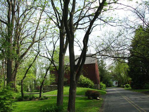 Spring walk 057