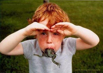 Eat_frog
